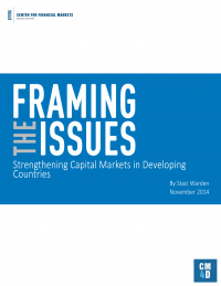 Framing the Issues Strengthening Capital Markets in Developing Countries