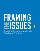 Framing the Issues: Strengthening Capital Markets in Developing Countries